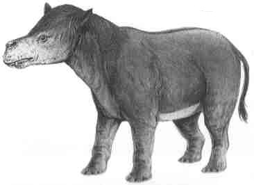 http://www.paleocene-mammals.de/coryphodon.jpg